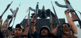 Kritik: Cartel Land (MX/US 2015)