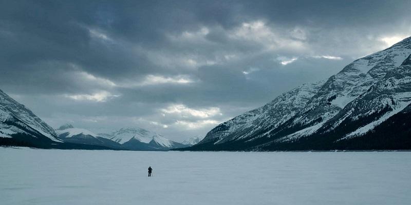 Kritik: The Revenant – Der Rückkehrer (USA 2015)