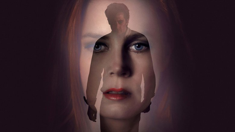 Kritik: Nocturnal Animals (US 2016)