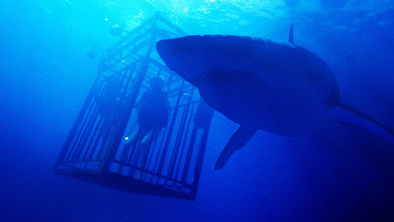 Kritik: 47 Meters Down (GB/DO/US 2016)